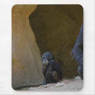 Babby Gorilla Mouse Pad