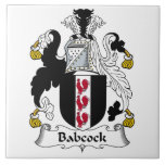 Babcock Family Crest Large Square Tile