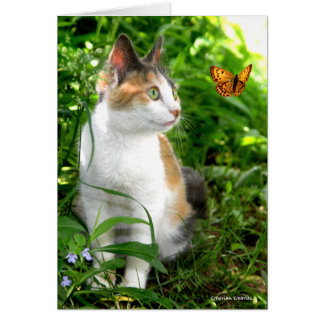 """""""Babe & The Butterfly"""" Greeting Card"""