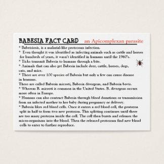 Babesia Fact Card