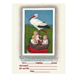 Babies in Stork Nest Vintage Birth Announcement Postcard