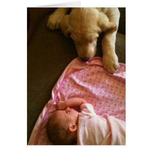 Babies~n~Puppies Tarjeta De Felicitación