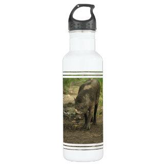 Babirusa  24oz water bottle