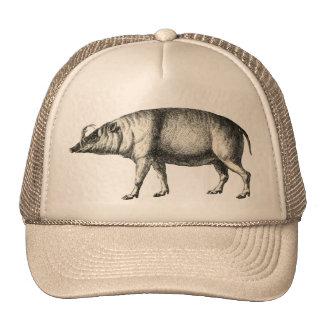 Babirusa Wild Pig Boar Hog Warthog Vintage Art Hat
