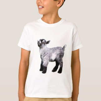 Bably Miniature Goat Shirt