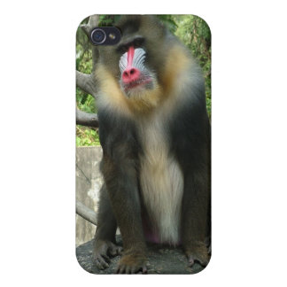 baboon,狒狒 iPhone 4 case