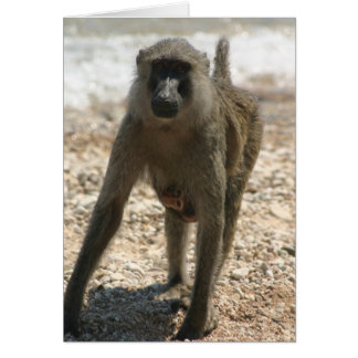 Baboon and Baby Card