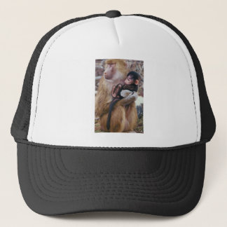 Baboon and trucker hat