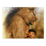 Baboon & Baby Prints Postcards