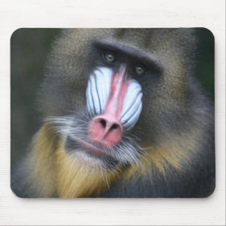Baboon Face Mouse Pad