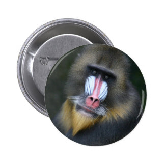 Baboon Face Round Button