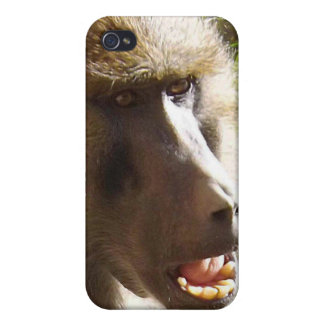 Baboon Face Showing Teeth Cover For iPhone 4