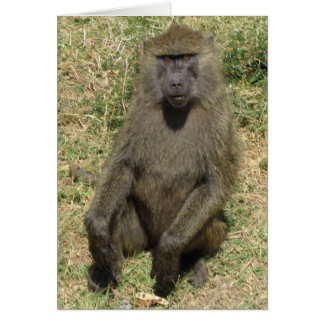 Baboon male greeting card
