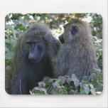 Baboon Mousepads