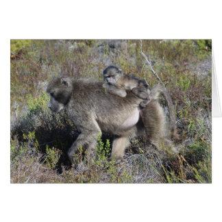 Baboon Notecard