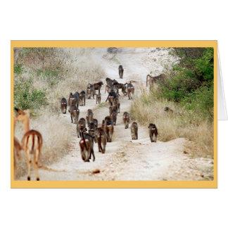 Baboon rush hour greeting card