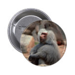 Baboon Sitting Buttons
