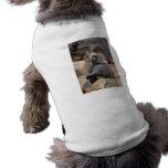 Baboon Sitting Doggie Tee Shirt