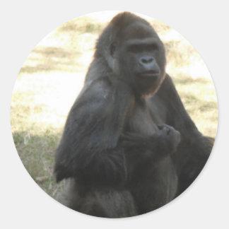 Baboon Sticker