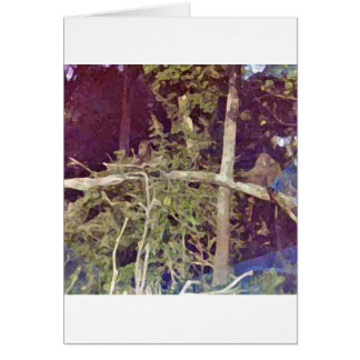 Baboons In The Trees Card
