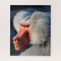 Baboons. Jigsaw Puzzle