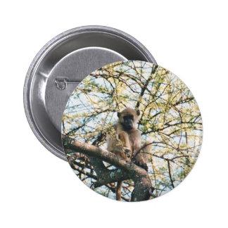 Babuino del botón en árbol pin