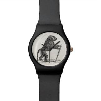 Babuinos del mono del bastón del babuino de los reloj