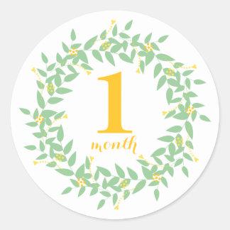Baby 1 Month Classic Round Sticker, Glossy Classic Round Sticker