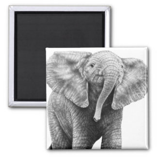Baby African Elephant Magnet