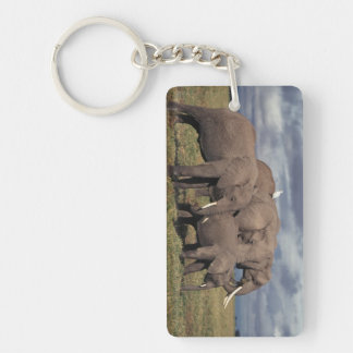 Baby African Elephant with family Keychain