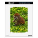 Baby Alaotran Gentle Lemur NOOK Skins