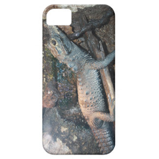 Baby Alligator iPhone SE/5/5s Case