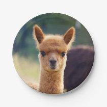 Baby Alpaca 7 Inch Paper Plate