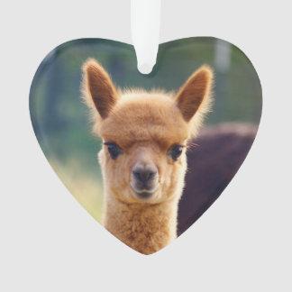 Baby Alpaca Heart Ornament