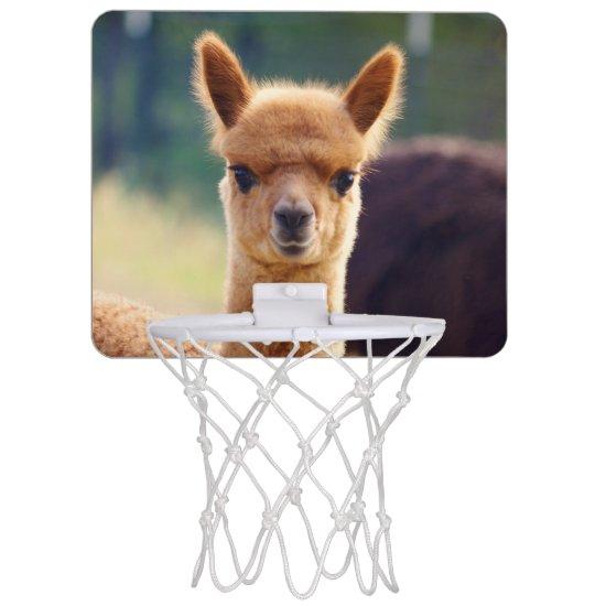 Baby Alpaca Mini Basketball Hoops