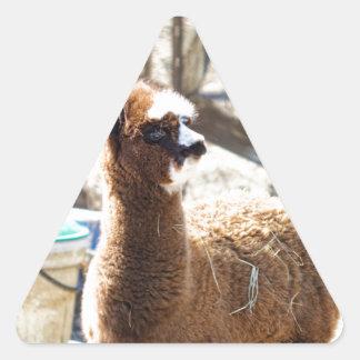 Baby Alpaca - Vicugna pacos Triangle Sticker