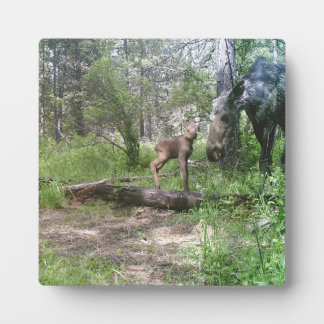 Baby and mother moose plaque