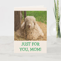 Baby Angora Goat Mother's Day Card