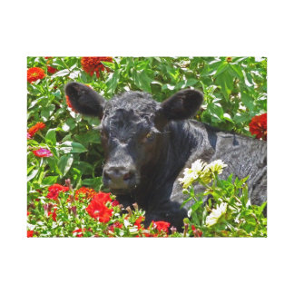Baby Angus calf in the Flowers Canvas Print