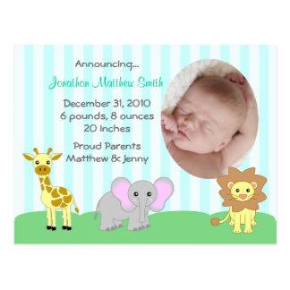 Baby Animals Birth Announcements Postcard (TBA)