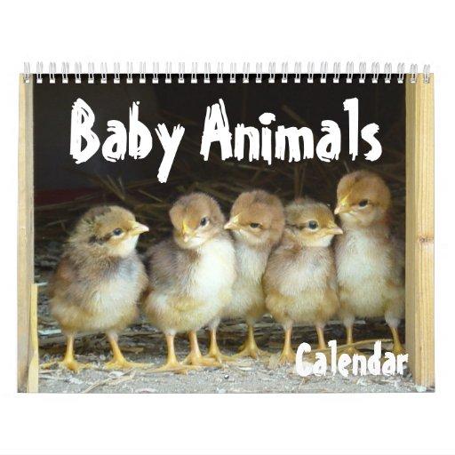 Baby Animals Calendar