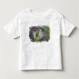 Baby Antarctic Fur Seal Arctocephalus Toddler T-shirt