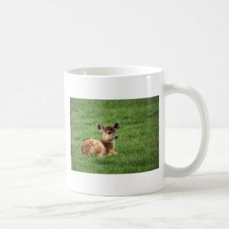 Baby Antelope Coffee Mugs