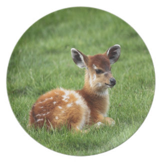 Baby Antelope Party Plates