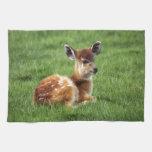 Baby Antelope Towels