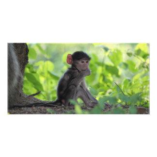 Baby Baboon Photo Card