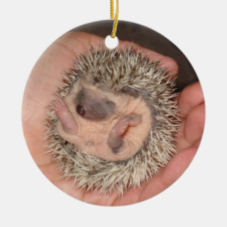 Baby Ball ornament