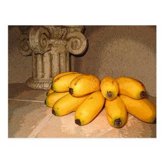 Baby Bananas Postcard