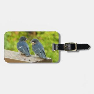 Baby Barn Swallows Nature Bird Photography Bag Tag