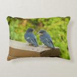 Baby Barn Swallows Nature Bird Photography Decorative Pillow